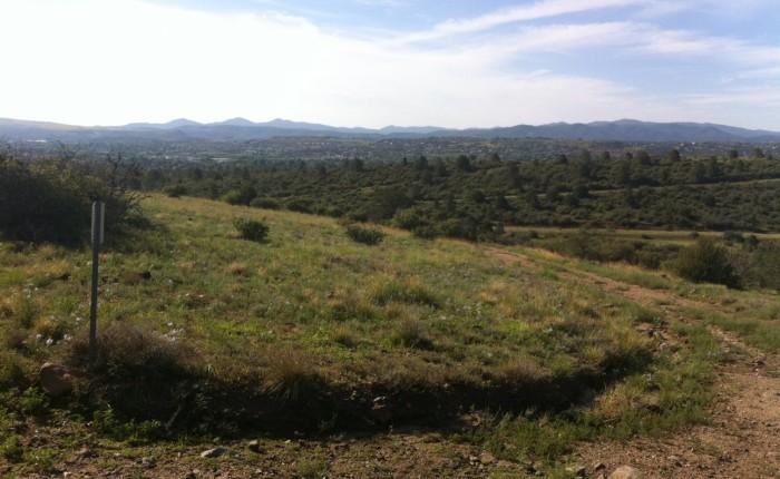 Pioneer Park Trails