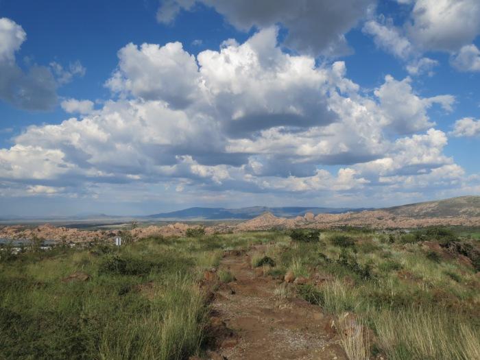 Vista Park Trails