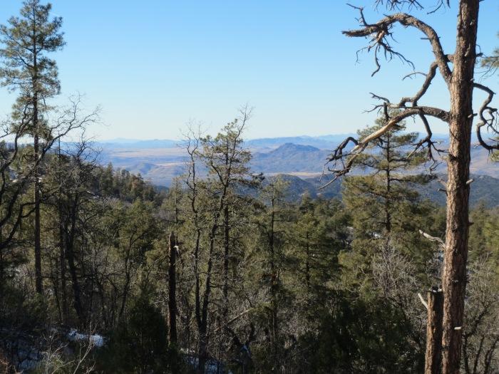 Mount Francis