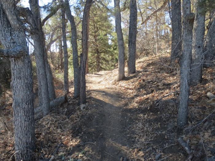 Feb 3 –9
