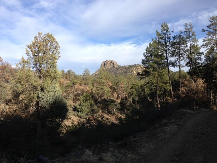 Circle Trail #332